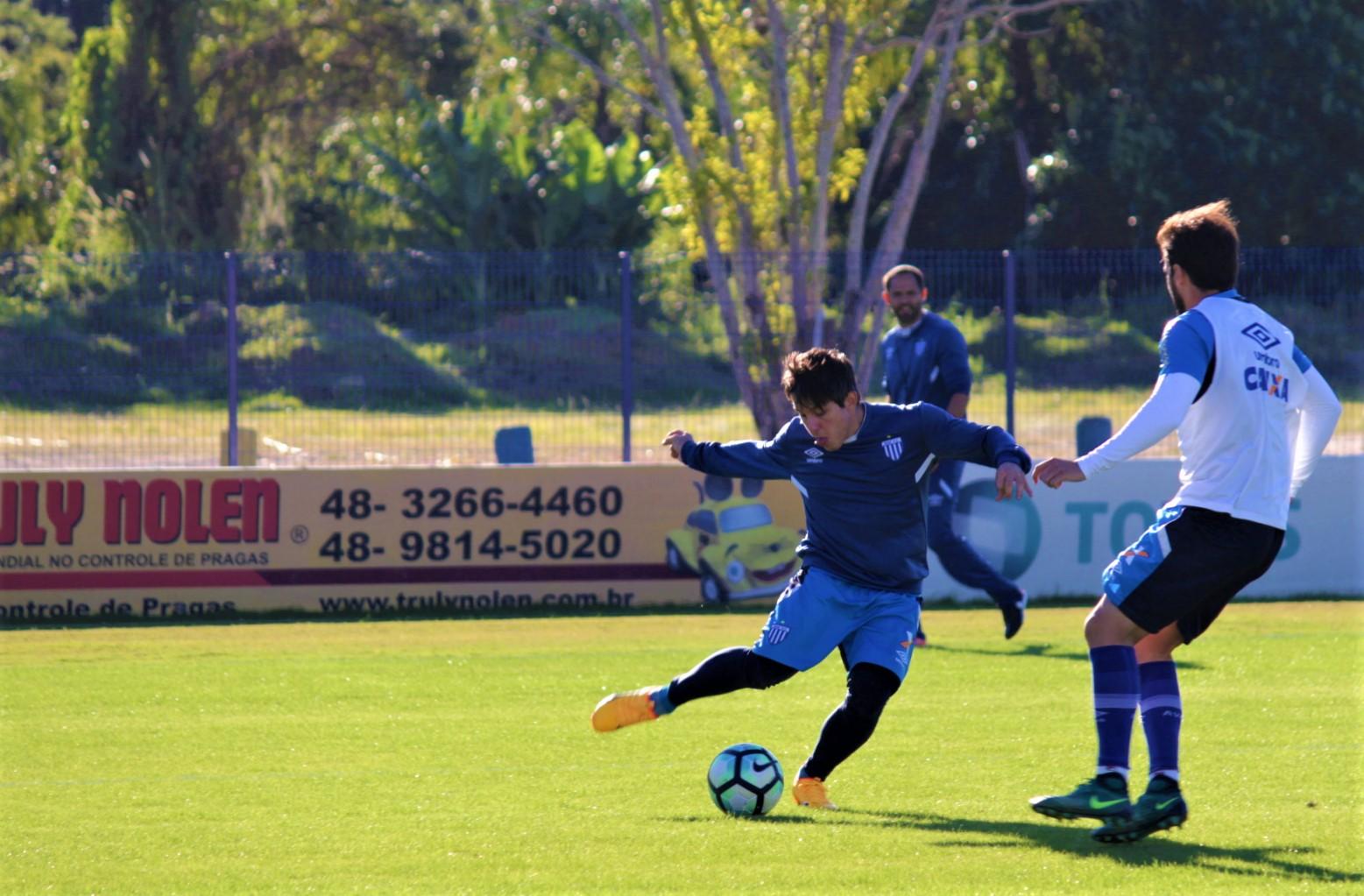Avaí se reapresenta e inicia preparação para enfrentar o Cruzeiro