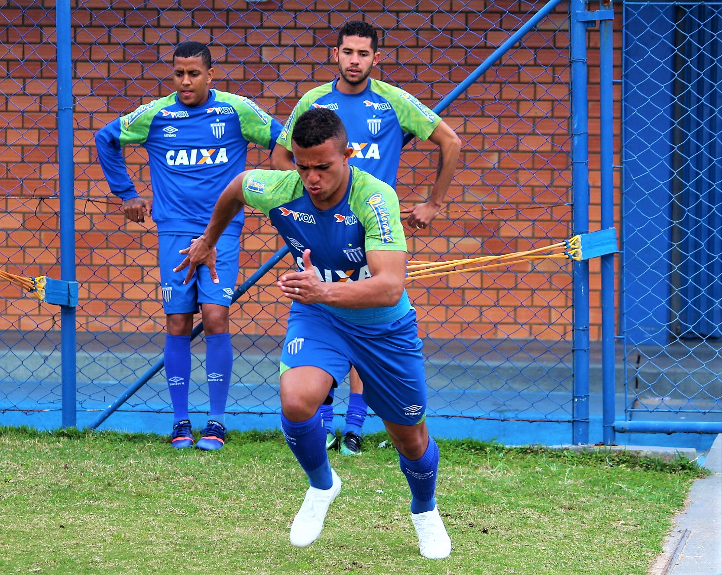 Avaí inicia a semana de preparação para partida importante contra o Criciúma