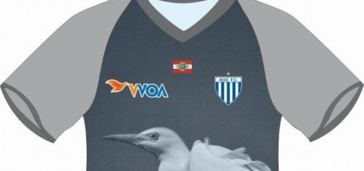 camisa formosa do sul MENOR
